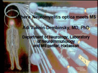 Where Neuromyelitis optica meets MS